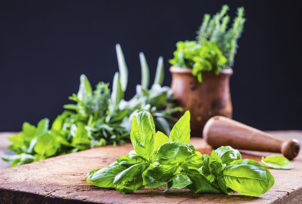 foods not to refrigerate- herbs