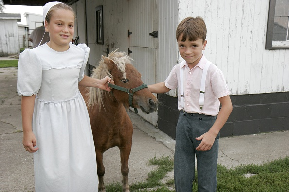 Comparison of BMI and Physical Activity Between Old Order Amish Children and Non-Amish Children