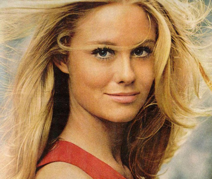 TV stars cybill shepherd