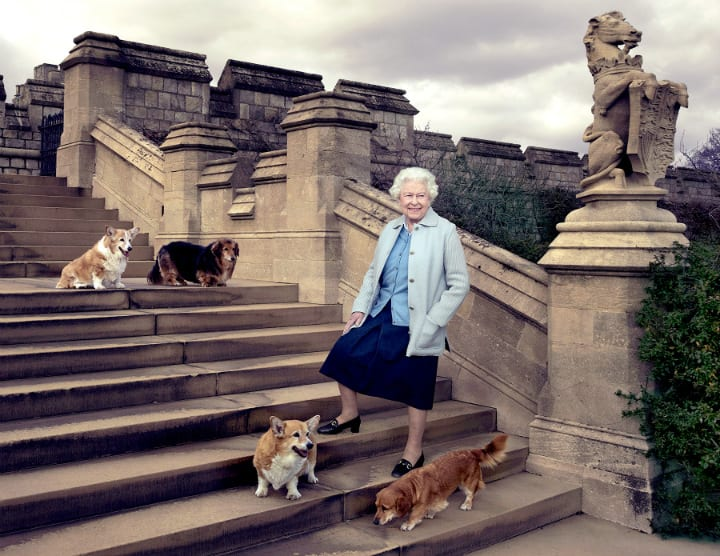 Buckingham Palace - The Queen and Her Corgis