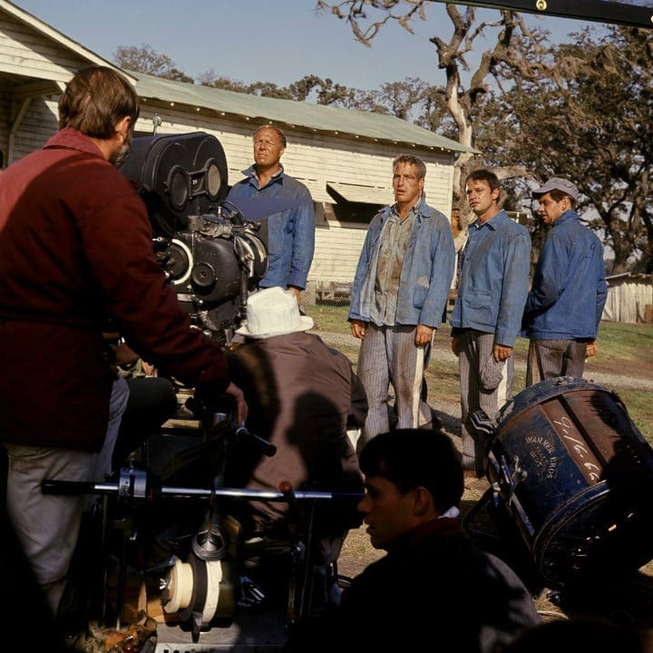 behind the scenes facts from the hit movie cool hand luke icepop