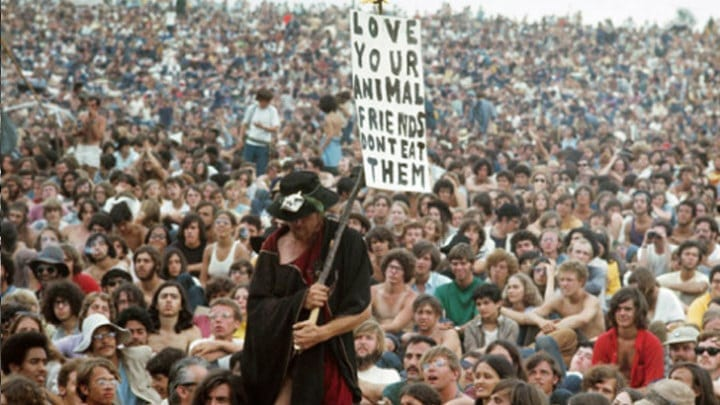 Protesting and Demonstrations Were Regular At Woodstock But No Violence Occurred