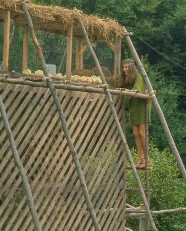 Hippie Girl Checking Out the Chicken Coop