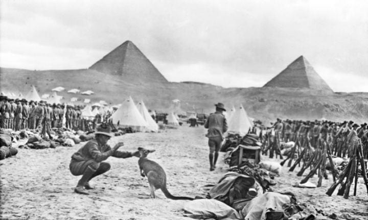 australian soldiers wwi world war one kangaroos egypt pyramids must see rare historical photos